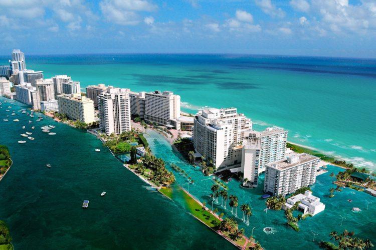 Tabara in Miami 2