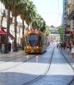 Curs Limba Franceza - Montpellier, Franta