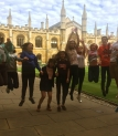 Tabara Limba Engleza - Clare College & Corpus Christi College, Cambridge